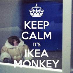kelowna-mortgage-ikea-monkey